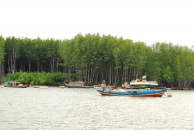 Sông Thị Vải, dòng sông huyết mạch có vai trò quan trọng đối với tỉnh Bà Rịa - Vũng Tàu